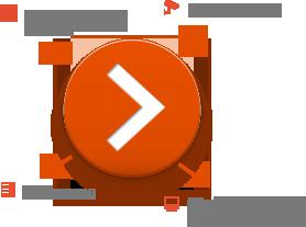 MACROSCOP LS (х86), ПО для  IP-камер