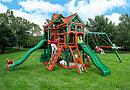 Детская площадка  Герцог 2 эконом, фото 2