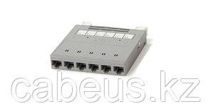 Hyperline PPTR-CSS-1-6xRJ45-C6-SH-STL Кассета для медных претерминированных решений, 6 экранированных портов