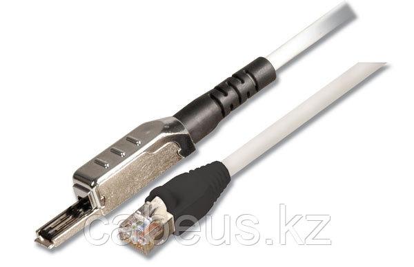 Siemon T1S4V-01M-B01L Патч-корд S/FTP, категория 6A, 1 пара TERA-RJ45, LSOH, 1 м, слоновая кость, черные колпачки