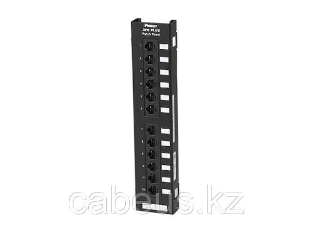 PANDUIT DP125E88TGY Настенная патч-панель Cat.5e DP5e 110, 12 портов, Т568A/B, (монтируется на кронштейн
