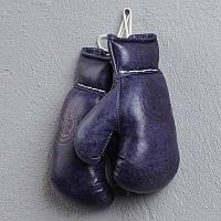Кожаные боксерские мини-перчатки, синие Sport Boxing Gloves, Library Blue