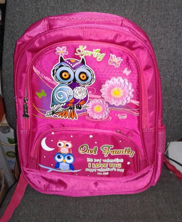 Школьный рюкзак для девочек ортопед.