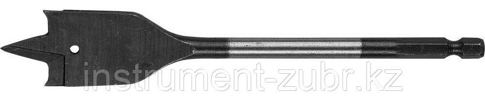 Сверло перовое по дереву, с боковыми подрезателями, ЗУБР Мастер 29505-18, d=18мм