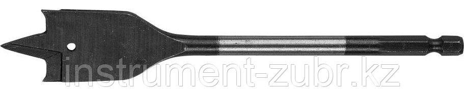 Сверло перовое по дереву, с боковыми подрезателями, ЗУБР Мастер 29505-18, d=18мм, фото 2