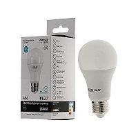 Лампа Gauss Elementary LED A60 20W E27 4100K 1/40