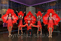 Шоу балет Индиго - Антре