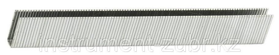 Скобы для электрического степлера, тип 55, 15мм, ЗУБР 31660-15, 3000 шт, фото 2