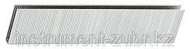 Скобы для электрического степлера, тип 55, 19мм, ЗУБР 31660-19, 3000 шт