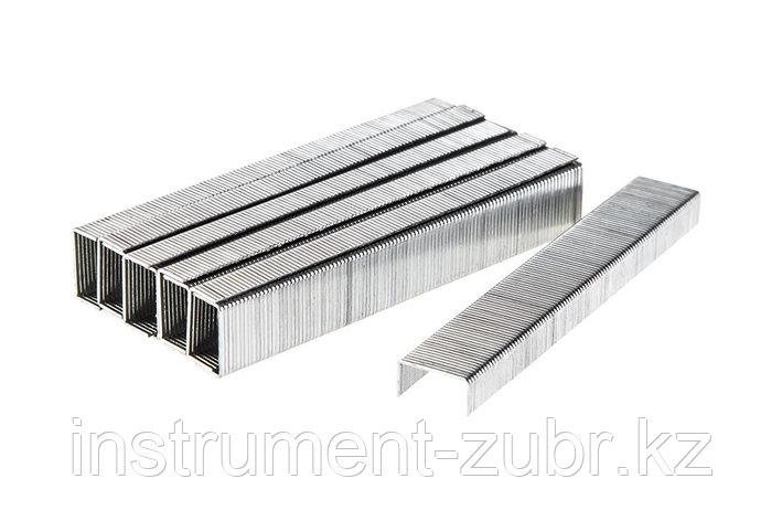 Скобы тип 53, 8 мм, супертвердые, KRAFTOOL 31670-08, 1000 шт, фото 2