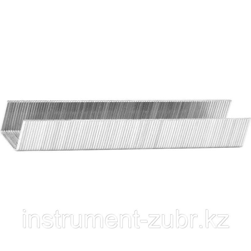 Скобы тип 53, 18 мм, супертвердые, KRAFTOOL 31670-18, 1000 шт