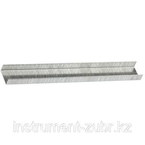 Скобы тип 140, 8 мм, супертвердые, KRAFTOOL 31680-08, 1000 шт, фото 2