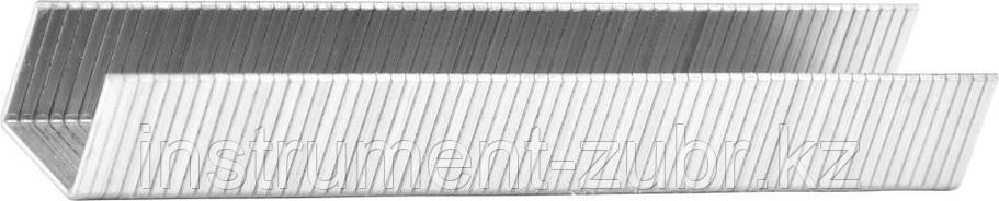 Скобы тип 140, 10 мм, супертвердые, KRAFTOOL 31680-10, 1000 шт, фото 2