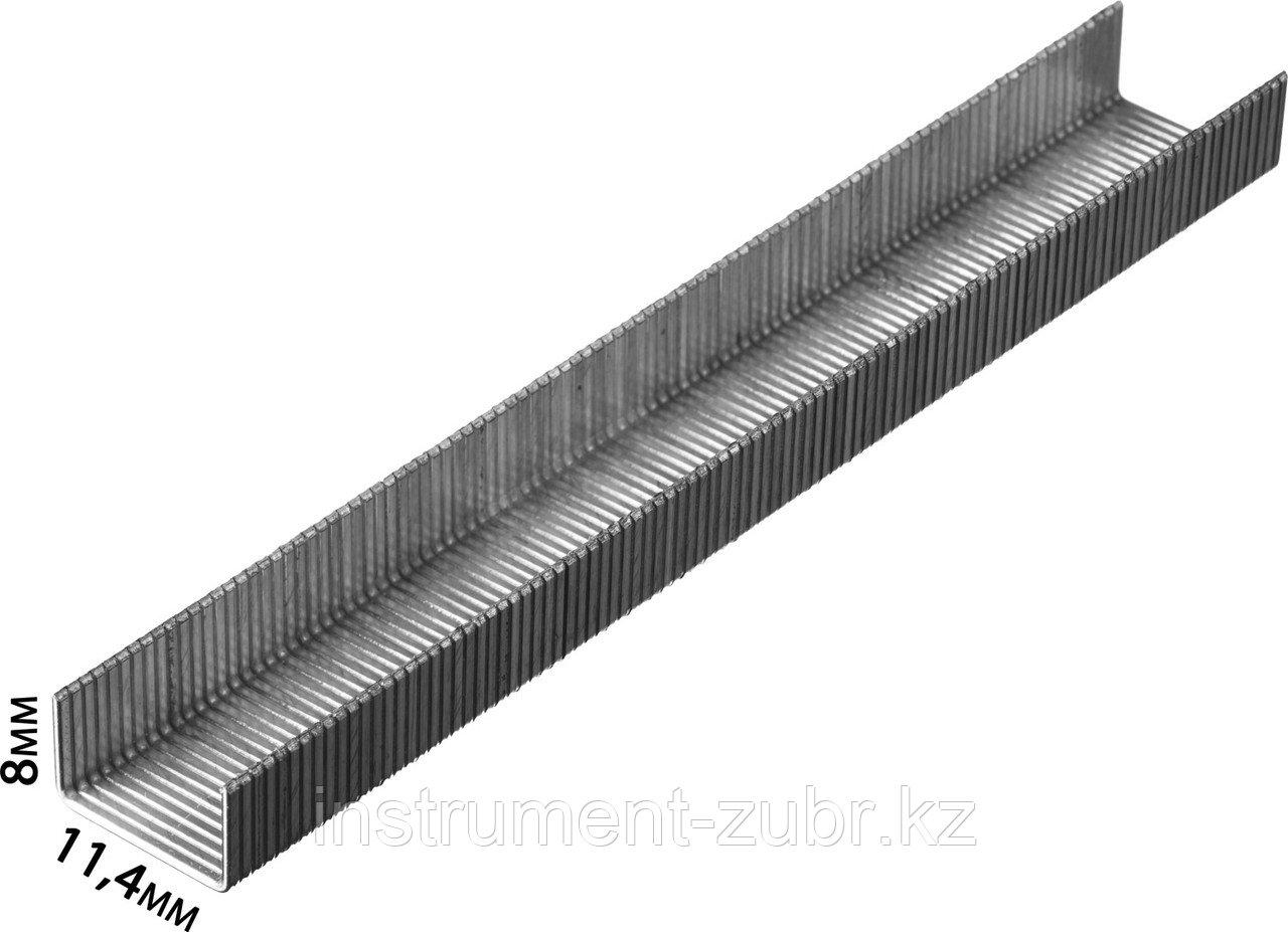 Скобы тип 80, 8 мм, супертвердые, KRAFTOOL 31690-08, 3000 шт