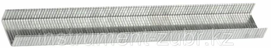 Скобы тип 80, 14 мм, супертвердые, KRAFTOOL 31690-14, 3000 шт, фото 2