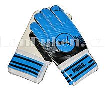 Перчатки вратарские футбольные Puma (синие)
