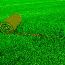 Искуственный газон