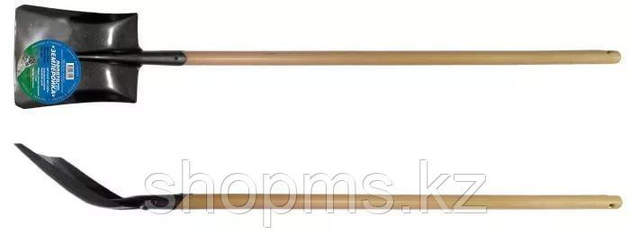 Лопата совковая   с березовым черенком