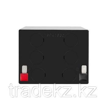 Аккумулятор для UPS Yuasa NPW 20-12, 12В/4.5А*ч, фото 2