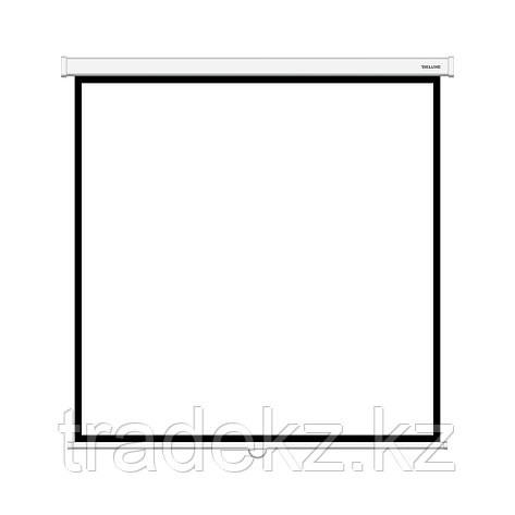 Экран для проекторов Deluxe DLS-M203xW, фото 2