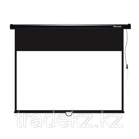 Экран для проекторов Deluxe DLS-M229-185, фото 2