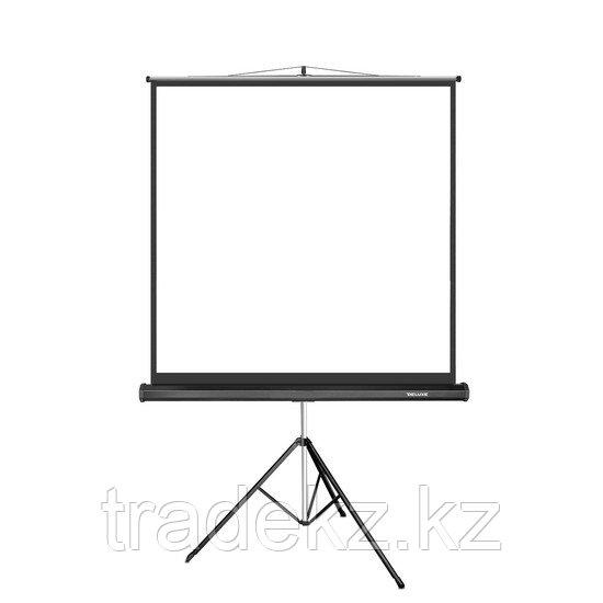 Экран для проекторов Deluxe DLS-T180x