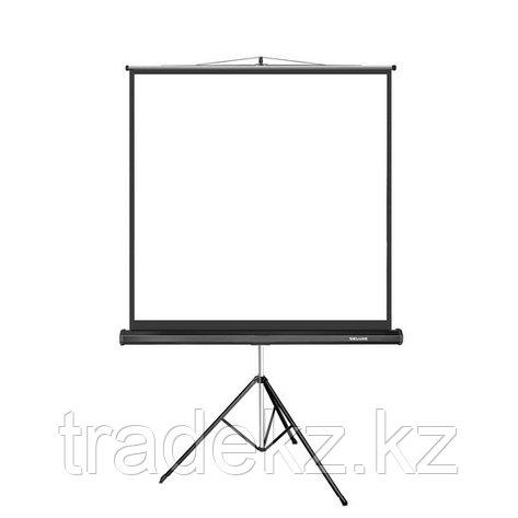 Экран для проекторов Deluxe DLS-T180x, фото 2