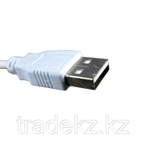 Интерфейсный кабель AM-AM, фото 2