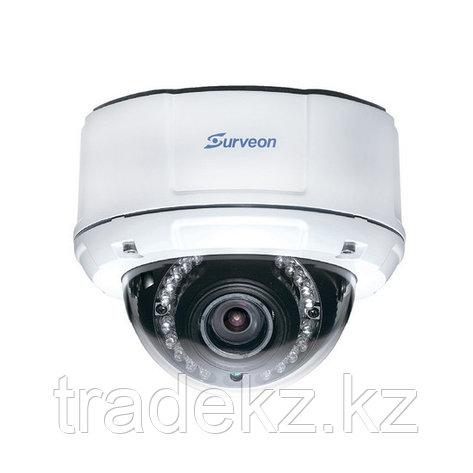 Купольная IP камера Surveon CAM4471M, фото 2