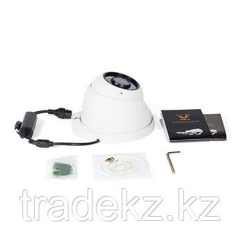 Купольная IP камера EAGLE EGL-NDM475, фото 2
