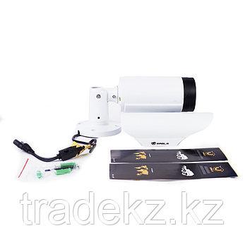 Цилиндрическая AHD камера EAGLE EGL-ABL370, фото 2