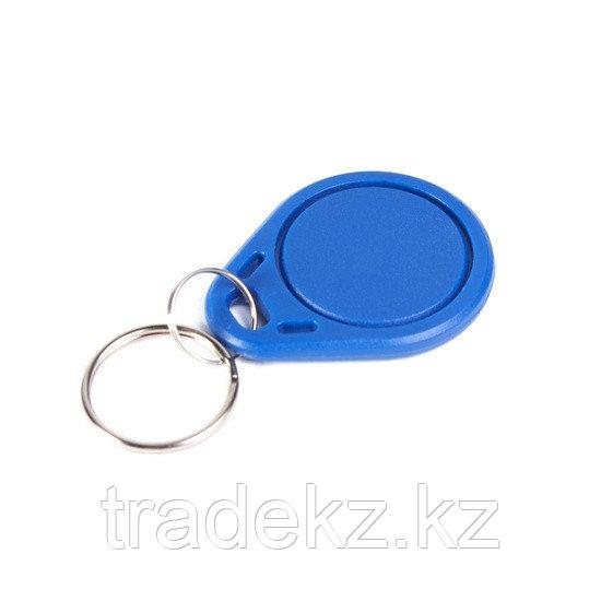Брелок EM-Marine RFID KR41N-B2 синий