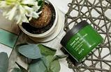 Green Tea Purifying Clay Mask [Skin79], фото 2