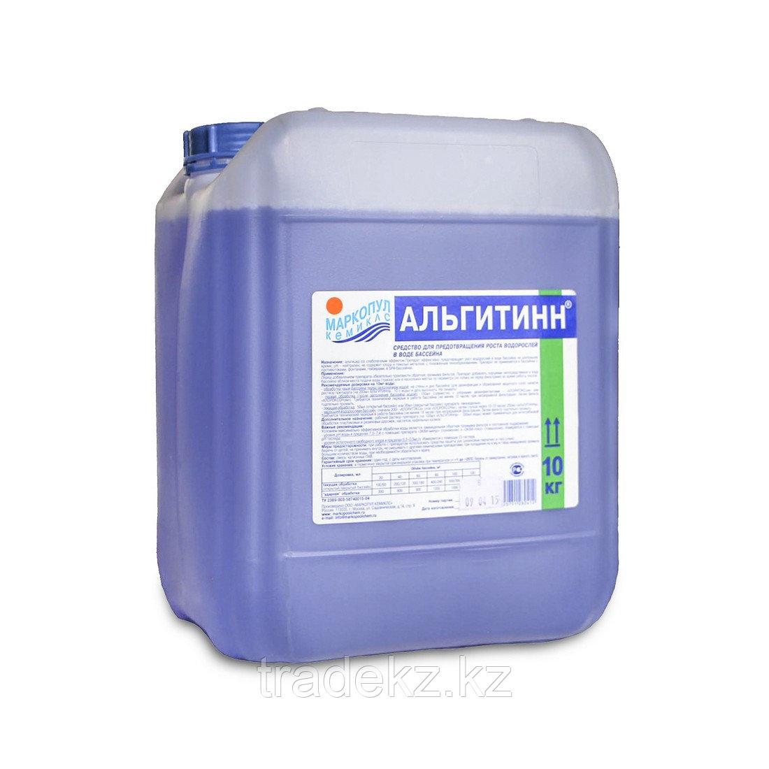 Химия для обработки воды в бассейне АЛЬГИТИНН 10 литров