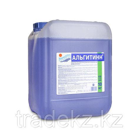 Химия для обработки воды в бассейне АЛЬГИТИНН 10 литров, фото 2