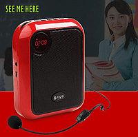 Мегафон T200 для экскурсоводов, гидов и переводчиков