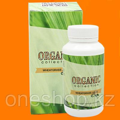 Wheatgrass (Витграсс) для похудения (Organic Collection)