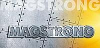 """Листовым прокатом """"MAGSTRONG"""" S550MC, фото 1"""
