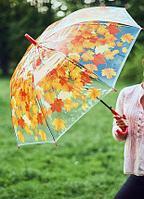 """Зонт прозрачный """"Листопад"""", оранжевый"""