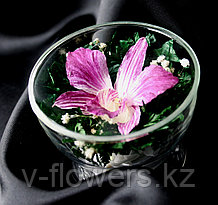 Цветы в стекле CuSO