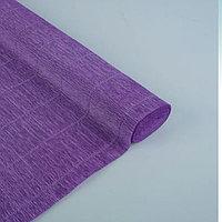 Бумага гофрированная 17E/2 фиолетовая, 50 см х 2,5 м