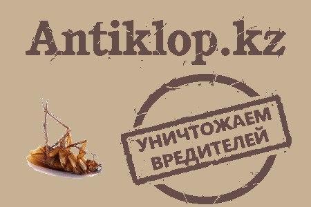 Дезинсекция в Алматы