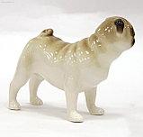 Фарфоровая статуэтка Мопс стоящий Арчи. Императорский фарфор, фото 2