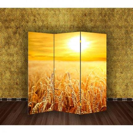 """Ширма """"Пшеничное поле"""" 150х160см, фото 2"""
