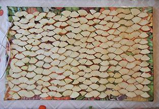 Сушилка для овощей и фруктов Самобранка 75 х 50 см, Алматы, фото 3