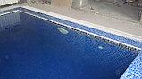 Строительство  бассейнов, фото 2