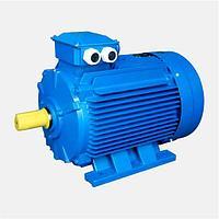 Двигатель электрический 4 кВт 1000 об/мин