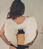 Крылья ангела (белые)