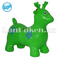 Резиновый олень музыкальный зеленый (фитбол)