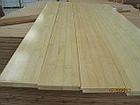 Бамбуковый паркет, фото 9